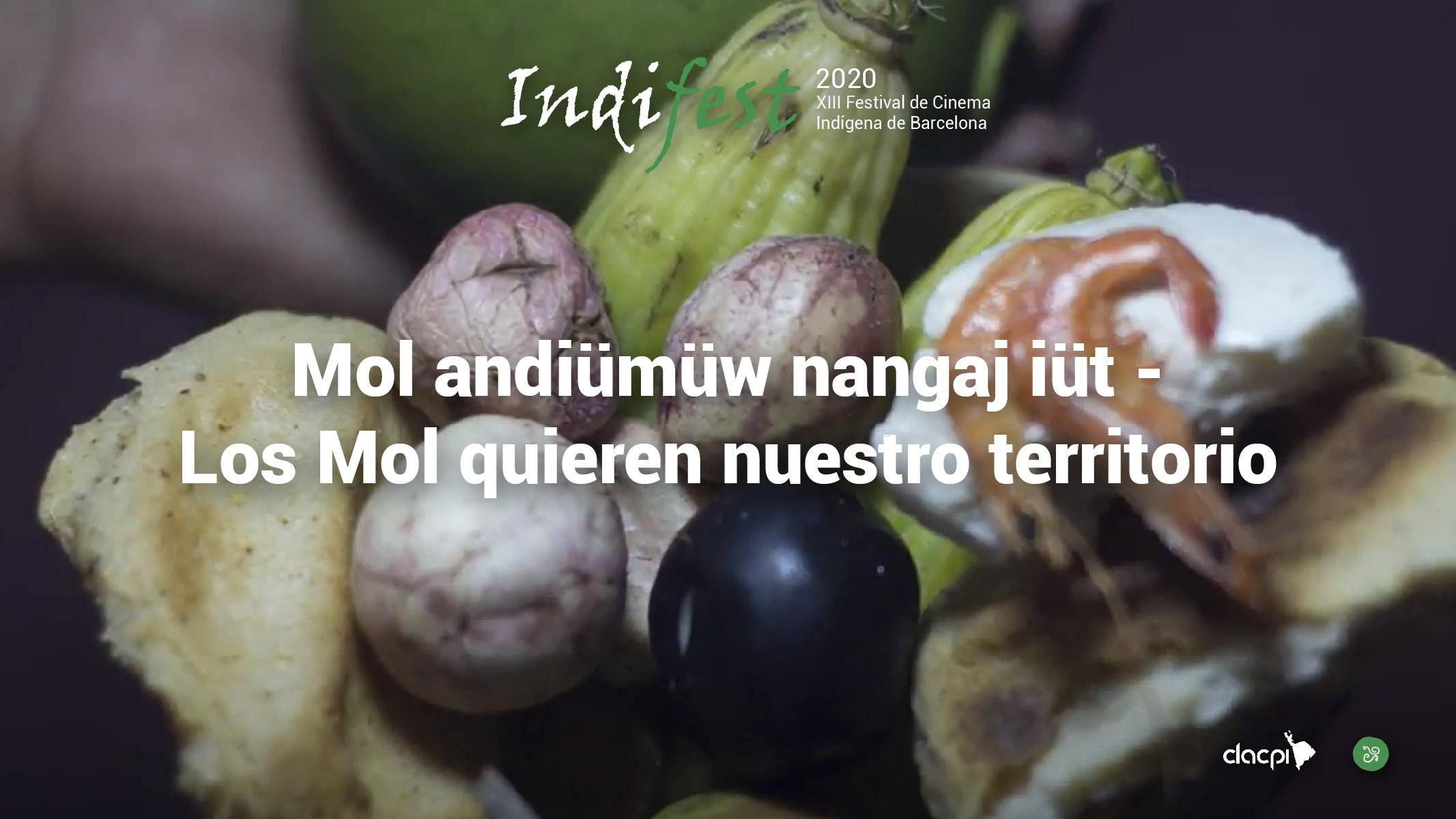 Mol andiümüw nangaj iüt – Los Mol quieren nuestro territorio
